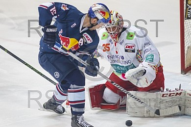 GER, DEL, EHC Red Bull Muenchen vs. Dueseldorfer EG
