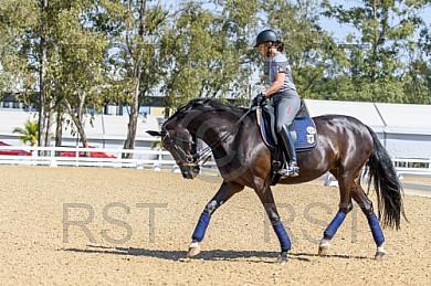 BRA, Olympia 2016 Rio, Pferdesport Dressur - Training